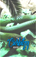 Ciorbitzq_