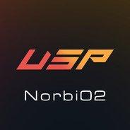 Norbi02 GO.USP.RO
