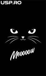Meow Meow 💖